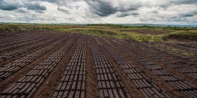 Плюсы и минусы различных видов твёрдого топлива для котлов: уголь и торф