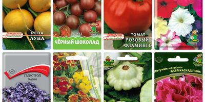 Отзывы о семенах производителя ПОИСК