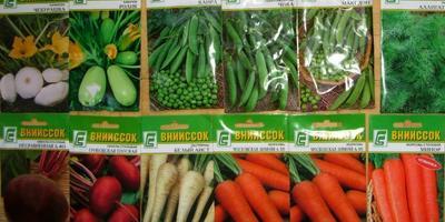 Отзывы о семенах производителя ВНИИССОК