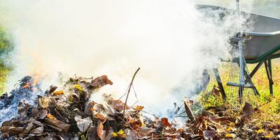 Урок 6. Способы утилизации отходов от обрезки