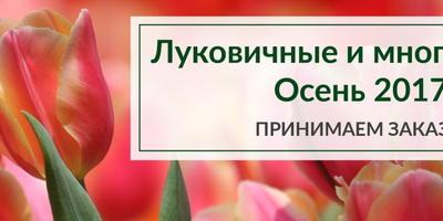 Открыт приём заказов на осенний ассортимент луковичных и многолетних растений от Агрофирмы ПОИСК!