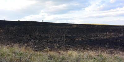 За огнем не уследили, чуть заправку не спалили