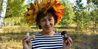Золотая осень, или Грибная сказка осеннего леса