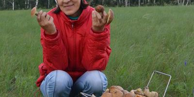 В лес за грибочками