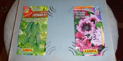 Не совсем обычное хранение пакетиков с семенами