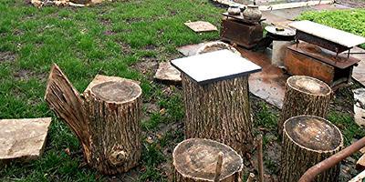 Как мы использовали спиленные деревья