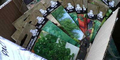 """Полсотни пакетов семян фирмы """"Поиск"""" - чудесный приз за 2-е место в конкурсе """"Урожай-2017"""""""