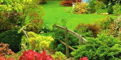 Осенняя обрезка деревьев и кустарников