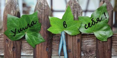 Пометим территорию: креативные садовые таблички