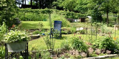 Распространенные ошибки в дизайне сада. Часть 1: связки и границы