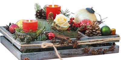 Новый год приходит в сад: создаем композиции из природных материалов