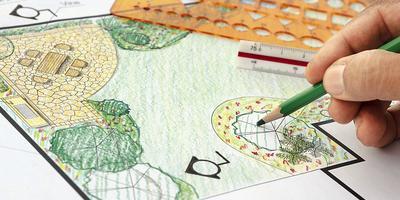 Сани — летом, проект — зимой: как распланировать дачный участок