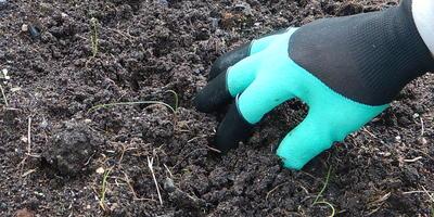 Тестируем перчатки с когтями Garden Genie Gloves от интернет-магазина Seedspost.ru