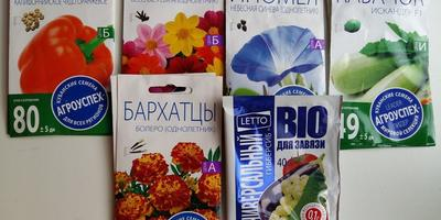 Посылка с семенами для тестирования от агрофирмы LETTO
