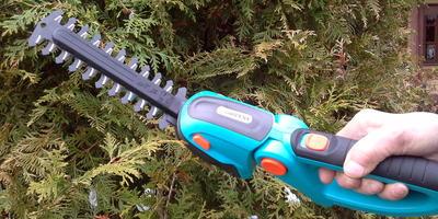 Долгожданный приз получен - комплект аккумуляторных ножниц для газонов и кустарников Comfort Cut