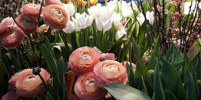 """Я побывала на выставке цветов """"Репетиция весны"""""""