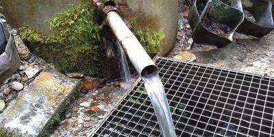 Какой водой лучше консервировать продукты - родниковой на даче или хлорированной из крана городской квартиры?
