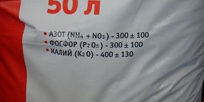 Баклажан Мраморный. Тест на всхожесть