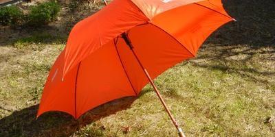 Зонтик в подарок