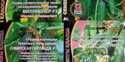 Приз  от интернет-магазина Seedspost.ru
