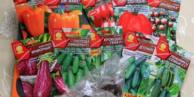 """Общее впечатление о протестированных сортах овощей """"Аэлита"""""""