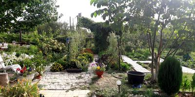 Домашнее задание №2: организация огорода на моём дачном участке