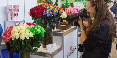 """Сайт """"7 дач"""" ждет вас на выставке """"Цветы"""" на ВДНХ"""