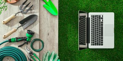 7 веских причин покупать в интернет-магазине «Семена-заказ»