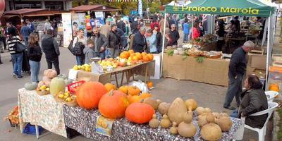 Праздник урожая в Италии