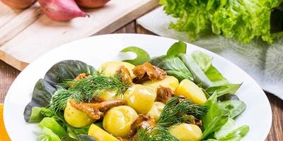 Салат с молодой картошечкой и грибами - просто объедение