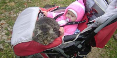 Маленький ребенок, частный дом, огород и мама-фанатичка: как совместить?