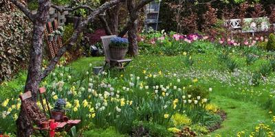 Весенняя пастораль, или Сад в естественном стиле