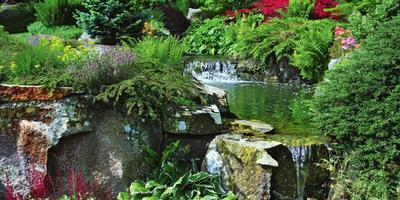 Как украсить сад с помощью камней