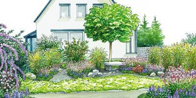 Один сад — две идеи: цветник без хлопот и живые изгороди