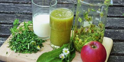 Полезные рецепты на основе дикорастущих трав
