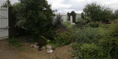 Распространенные ошибки в дизайне сада. Часть 2: форма, цвет, композиция