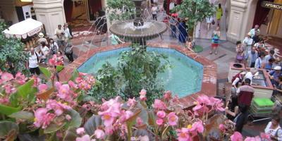 Встречайтесь в ГУМе у фонтана. Цветочный фестиваль в центре Москвы