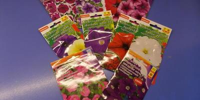 Отчет о получении посылки с семенами петуний