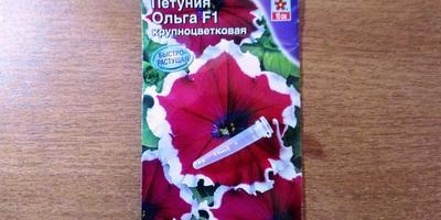 Петуния Ольга F1. Аналитический отчет