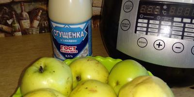 """Пюре """"Неженка"""", или Куда деть некондиционные яблоки"""
