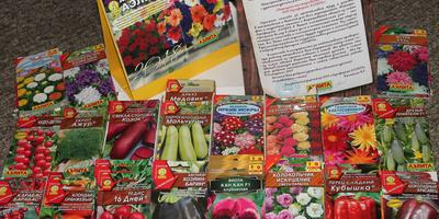 Суперподарок от ООО «Агрофирма АЭЛИТА» за участие в тестировании семян!