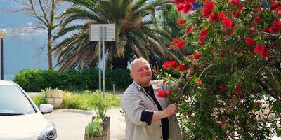 Цветы и природа Черногории. День второй. Парк Милочер и вся Будванская Ривьера