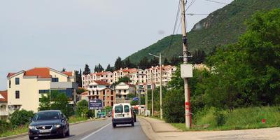 Цветы и природа Черногории. Герцог Нови, Тиват, Котор