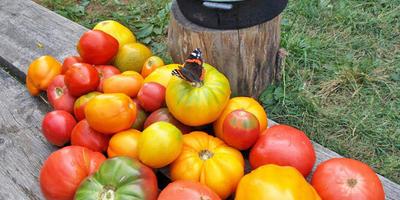 Соус томатный - только свой