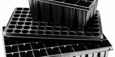 Как выращивают рассаду в пластиковых кассетах?