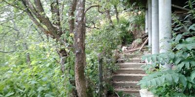 Посоветуйте приемы ландшафтного дизайна для холмистых участков