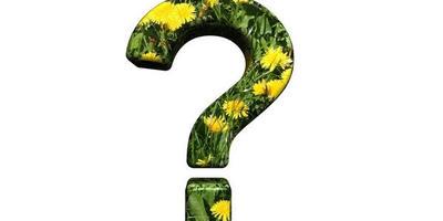 Как избавиться от неизвестного сорняка?