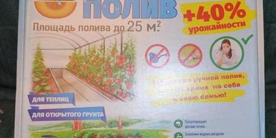 Забежала за пакетиком семян