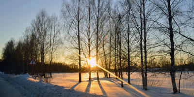 Галерея фотоизбушки: февраль