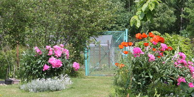 Про мой любимый сад